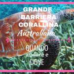 grande barriera corallina australiana: quando andare e dove