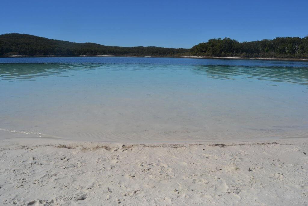 DSC 0115 min 1024x683 - Fraser Island: la guida completa per non sbagliare