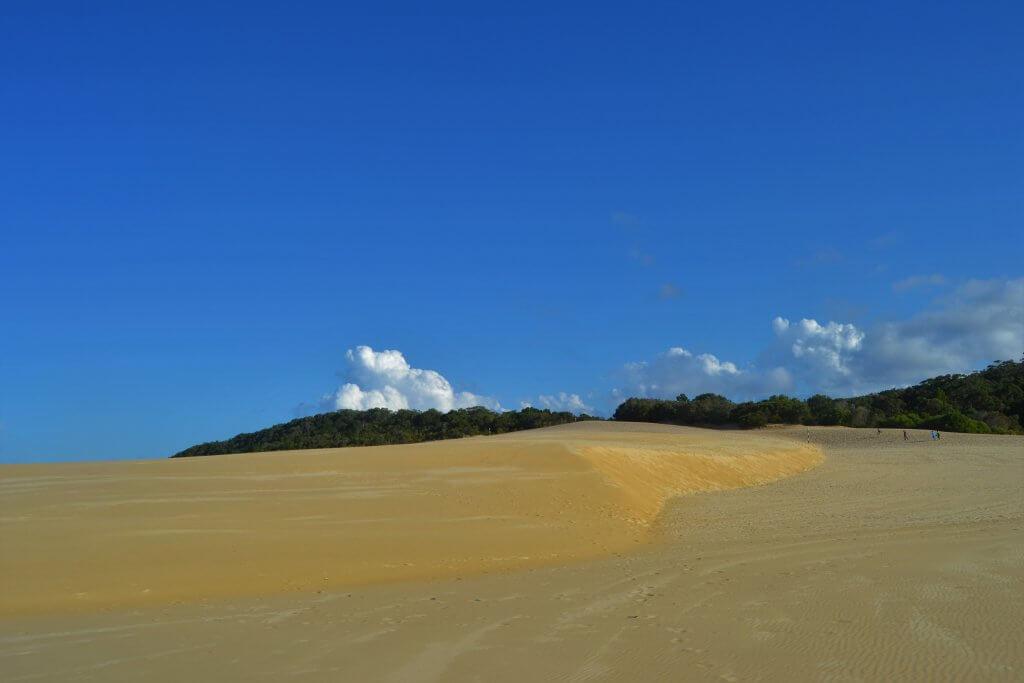 DSC 0924 min 1024x683 - Fraser Island: la guida completa per non sbagliare