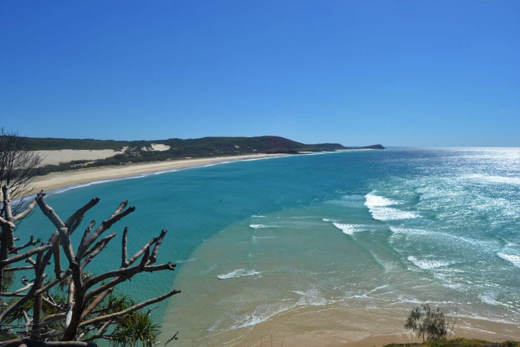 DSC 0970 min 1024x683 - Fraser Island: la guida completa per non sbagliare