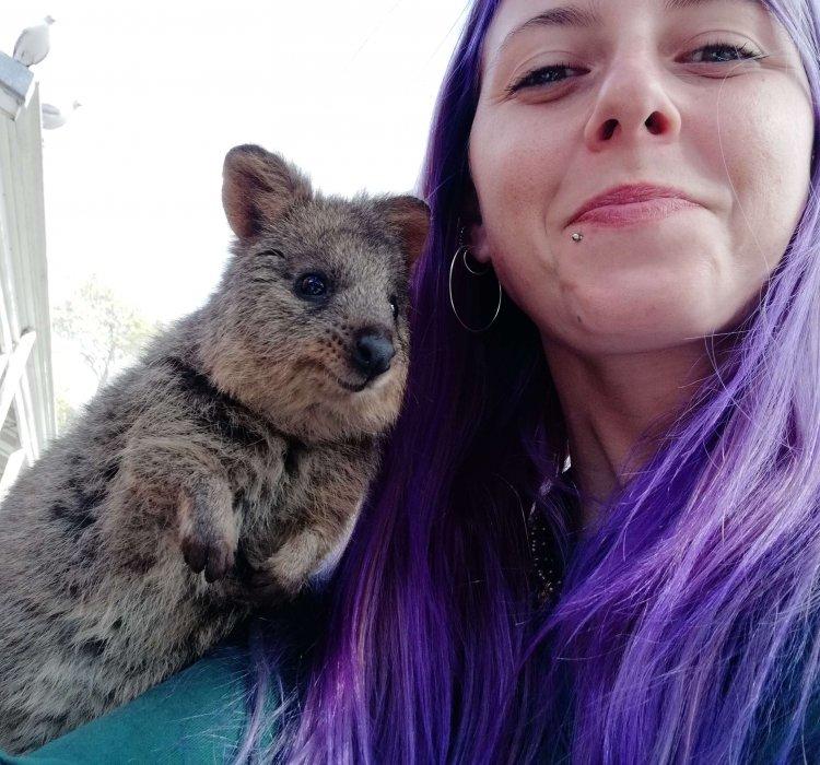 selfie con quokka